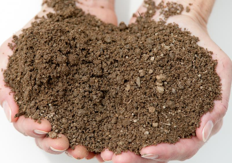 Bradsher landscape supplies soil for All about soil